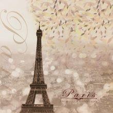 آلبوم کاغذ دیواری پاریس PARIS